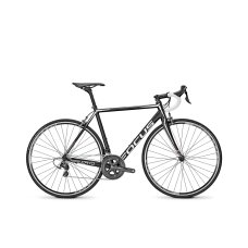 Bicicleta Focus Cayo Al Ultegra 22G 2016